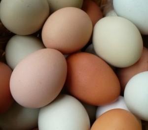 colored-eggs
