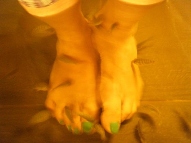 fish-spa-treatment