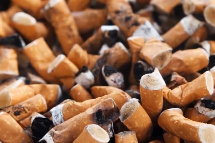 tobacco-day-3